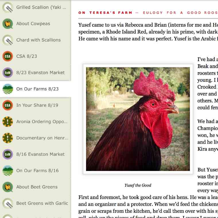 A eulogy to her rooster Yusef posted by Teresa Brockman on the Brockman Family Farming Blog